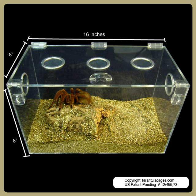 Tarantulacages Com Terrestrial Cages